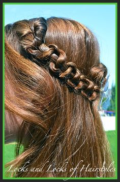 Locks and Locks of Hairstyles: How to do a Snake Braid