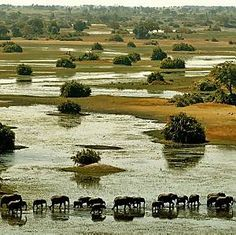 Botswana - Okavango Delta - Had a phenomanal few months there with Raleigh International in 1990