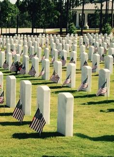 Fort Jackson National Cemetery, Columbia: See 16 reviews, articles, and photos of Fort Jackson National Cemetery, ranked No.20 on TripAdvisor among 94 attractions in Columbia.