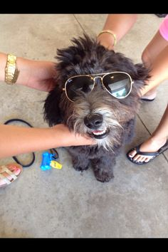 Ruby rocking the shades!