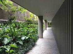 Tropical Landscaping, Landscaping Plants, Indoor Garden, Outdoor Gardens, Landscape Architecture, Landscape Design, Atrium Design, Ferns Garden, Tropical Garden Design