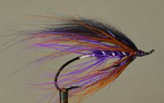 Purple October steelhead fly tyed in the Spey style.