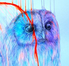 'Unknown' by Louise McNaught