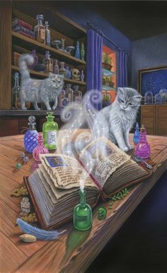 Mary Ann Lasher. Cover art for 'A Potion to Die For' by Heather Blake
