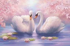 Good Afternoon sister have a relaxing time,xxx ❤❤❤ Swan Painting, China Painting, Beautiful Birds, Beautiful Pictures, Bird Pictures, Beautiful Paintings, Bird Art, Cute Wallpapers, Pet Birds