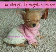 I'm allergic to negative people. Always leave them laughing.