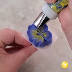 The vibrant pansy features petals in complementary colors and a distinctive loop center. They can be multi-colored or all one color. Add multi-tones using a striped bag or by painting in colors at the flower's center or at the petal edge with a fine brush dipped in a small amount of lemon extract tinted with icing color. Watch this quick video and learn how to pipe this beautiful buttercream pansy flower! #wiltoncakes #cakedecorating #cupcakes #pipingtips #wiltontips #buttercreamflowers… Buttercream Cake Decorating, Cake Decorating Designs, Creative Cake Decorating, Cake Decorating Techniques, Cake Decorating Tutorials, Creative Cakes, Cake Designs, Cookie Decorating, Icing Flowers