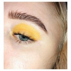 A sunflower sneezed on my eye ☀️☀️