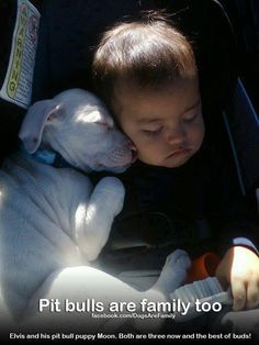 family love love
