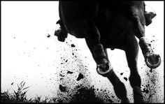 Photo by Kat Netzler/The Chronicle of the Horse