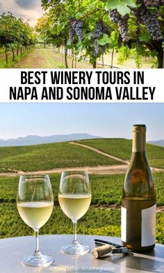 These are, hands down, the 10 Best San Francisco Wine Tours on the market! From wine and cheese in Napa Valley to culture in the city, these have it all! Sonoma Valley Wineries, Best Wineries In Napa, Napa Winery, Napa Vineyards, Sonoma Wine Tours, Napa Wine Tours, Sonoma California, California Wine, Northern California