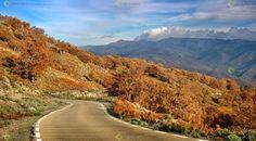 Ver y Conocer Extremadura - Foto - Puerto de Honduras en otoño. (902973)