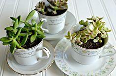 pinterest  deco tables succulentes | Déco de table printemps : 50 suggestions irrésistibles -
