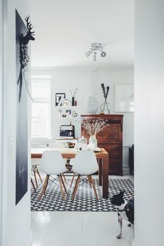kitchen / eames dsw