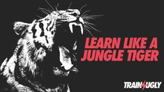 Learning Like a Jungle Tiger