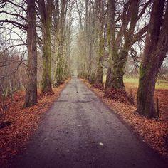 Long path...