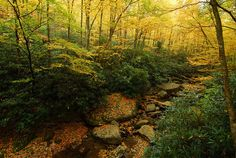 Boone Fork Creek by Mark VanDyke Photography, via Flickr via Blue Ridge Parkway, Calloway Peak Overlook mp 300, 2010