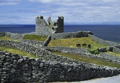 Inisheer, Aran Islands, Co Galway Photograph by The Irish Image Collection