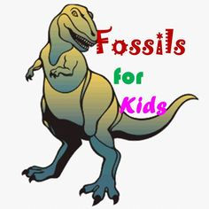 What are Fossils....animation video for kids