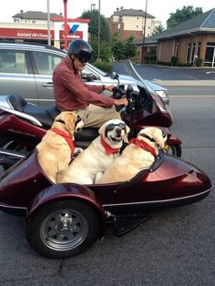 Out for a ride