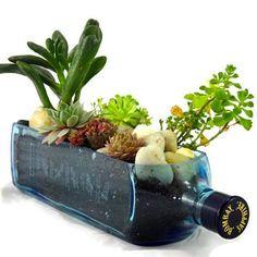 Bombay Sapphire Blue Gin Bottle Garden Succulent Planter Kit $40