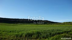 Paisajes veraniegos. #fotolia #sold #photo #Photo #photography #design #photographer #Landscapes #summer #green #fields #roads #colorful #buy