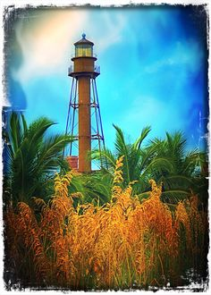Sanibel Lighthouse-Honey Places and Beautiful Travel,  My Favorite Places, Favorite Places & Spaces,  Places of interes, Pin more  Favorite Places  and places  from www.honeybuy.com.