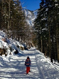 Three beautiful hikes in the Munich house mountains with great views and sledding fun! Winter Walk, Winter Hiking, Cuba Travel, Morocco Travel, Morocco Honeymoon, Morocco Hotel, China Architecture, Tourist Trap, Places In Europe