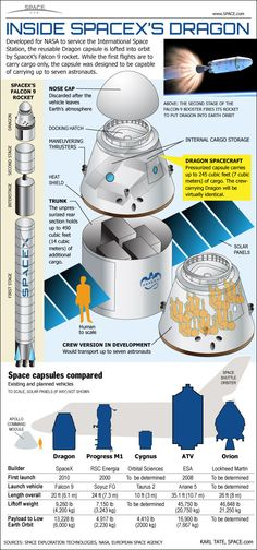 Space And Astronomy How SpaceX's Dragon Space Capsule Works (Infographic) - See inside SpaceX's private Dragon space capsule and Falcon 9 rockets. Spacex Dragon, Space And Astronomy, Nasa Space, Sistema Solar, Space Program, Space Station, Space Shuttle, Deep Space, Space Travel