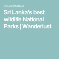Sri Lanka is a wildlife lover's paradise. Discover its best national parks, and what to look out for in each one, including leopards, elephants, and birdlife. Sri Lanka, National Parks, Wildlife, Wanderlust, State Parks