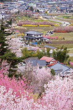 Look! This is a real place...see all the people? No wonder the Japanese paint and make woodblock prints! This is Fukushima.