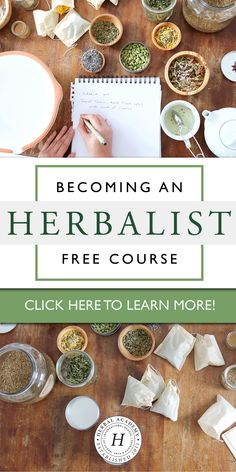 What You Need To Know About Becoming An Herbalist