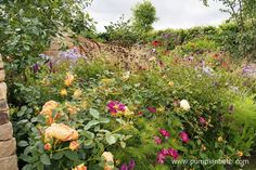 Zoflora: Outstanding Natural Beauty was designed by Helen Elks-Smith, and built… Rhs Hampton Court, Garden Walls, Elks, Annual Flowers, Judges, Colour Combinations, Flower Show, Fences, Beautiful Gardens