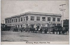 1910-Marketing-Wheat-at-Plainview-TX-Texas-Hale-County-N-of-Lubbock