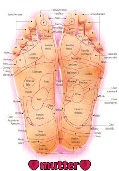 Erotic reflexology foot chart you