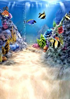 Find More Background Information about 5*7FT Kate Custom Ocean Backdrops…