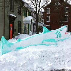 Snow Shark in Marietta by David deVitry and Justin Chimics