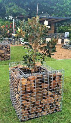 Grand Gabion Planter pushes boundaries all the way. Backyard Vegetable Gardens, Backyard Garden Design, Gabion Cages, Gabion Wall, Farm Gardens, Outdoor Gardens, Japanese Garden Design, Mediterranean Garden, House Landscape