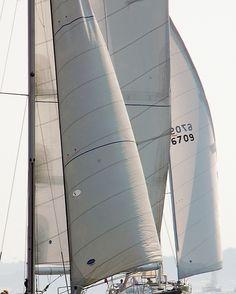 Sailing / Newport / David Fuller Photo