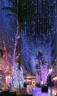 illumination, japon