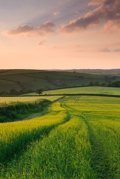 landscape photography | 17 best ideas about Summer Nature Photography on ...