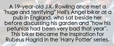 100 Things You Didn't Know About Harry Potter