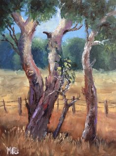 I am an artist who is passionate about Australia. I paint nature-inspired oil paintings of forests, flowers, the outback, gum trees and the sea. Cypress Trees, 30 Day Challenge, Dark Backgrounds, Tree Art, Exterior Paint, Beautiful Artwork, Golden Yellow, Art Paintings, Artist