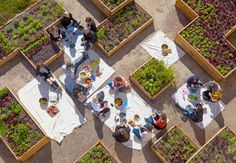 The Getty Salad Garden   an installation of organic heirloom vegetables and…