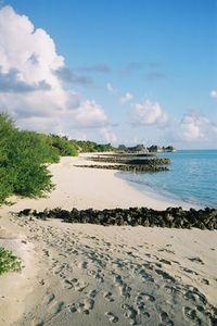 New York. South Hampton, Hampton Beach, Island Beach, Long Island, Mid Atlantic States, Empire State Of Mind, Bays, I Want To Travel, The Hamptons
