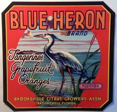 Blue Heron Florida Citrus Crate Label Brooksville Citrus Growers Brooksville,Fl. #Blue4Heron