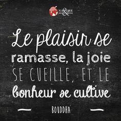 Le plaisir se ramasse, la joie se cueille et le bonheur se cultive. Bouddha ~ citation français ~