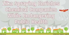 New research reveals that aerial spraying will reduce transmission, but it may not eliminate Zika virus. http://articles.mercola.com/sites/articles/archive/2016/09/14/zika-virus-aerial-spraying.aspx