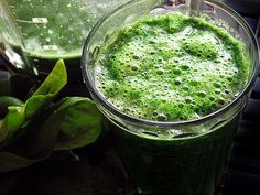 Spirulina one of the oldest lifeforms on earth. Spirulina is a blue-green microalgae that helped produce the oxygen in the atmosphere billions of years ago so that other lifeforms could appear! Natural Cancer Cures, Natural Cures, Natural Health, Weight Loss Smoothie Recipes, Green Smoothie Recipes, Green Smoothies, Spirulina Recipes, Nutrition, Health And Wellbeing