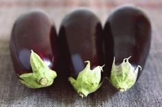 The Secret to Medieval Eggplant | You can get eggplant year round these days, but it�s still a summer vegetable to me. One spring, my family planted eggplant in our backyard and quickly discovered that the plant was diabolically well-suited to our climate. For years, it volunteered all over the place, and every summer we were buried in unplanned eggplants. My [�]